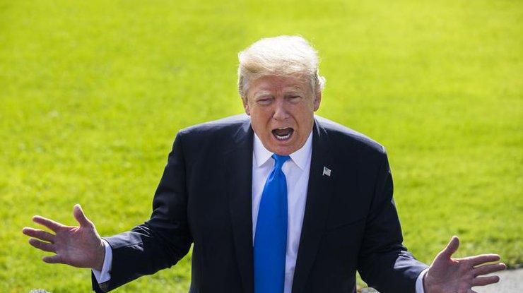 Трамп признался, что вдействительности он«очень разумный человек»