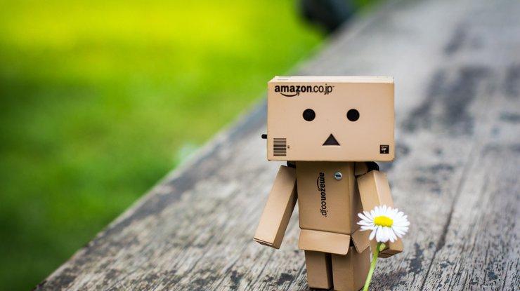 Пара изсоедененных штатов обманула веб-магазин Amazon на1,2 млн. долларов