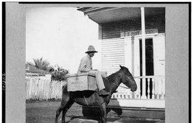 Для почтальонов было в порядке вещей использовать лошадей  в 40-ых – особенно в сельских районах