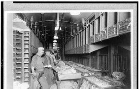 Группа людей, перебирающих почту в вагоне приблизительно в 1910