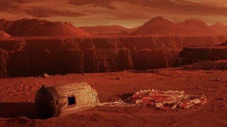 Голландские ученые смогли вырастить червей в 'марсианских' условиях