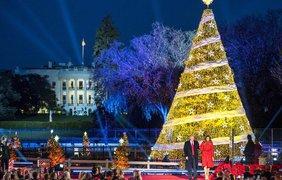 Дональд Трамп впервые на посту президента зажег огни на главной елке США