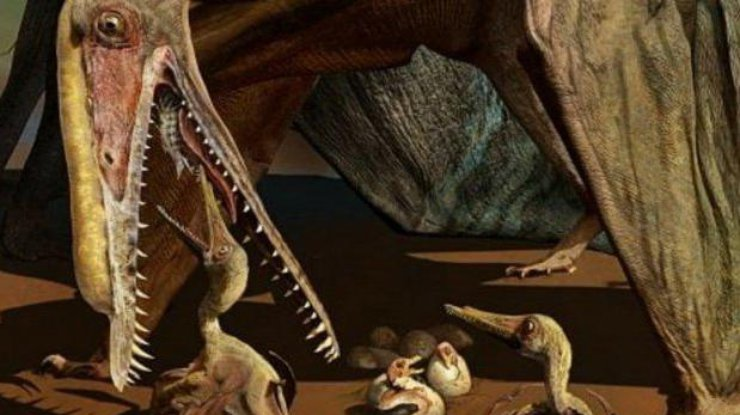 В КНР отыскали сотни яиц птерозавров