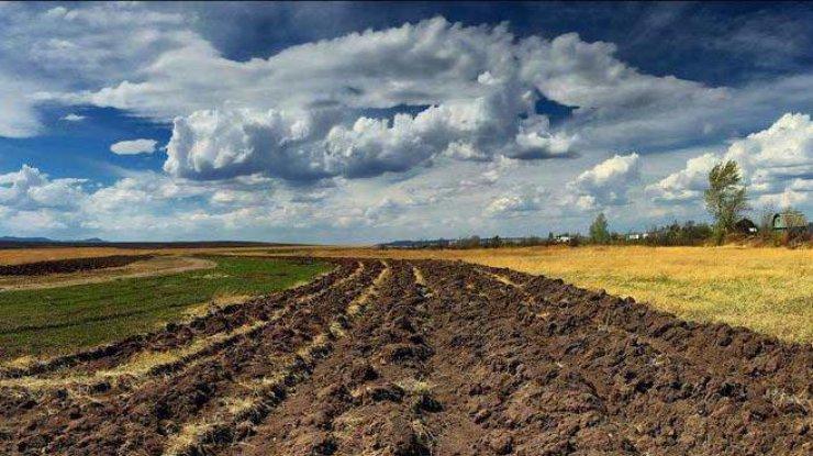 Рада отказалась отменить продление моратория на реализацию земли