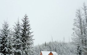 Зимняя сказка в Карпатах / Фото: из Instagram