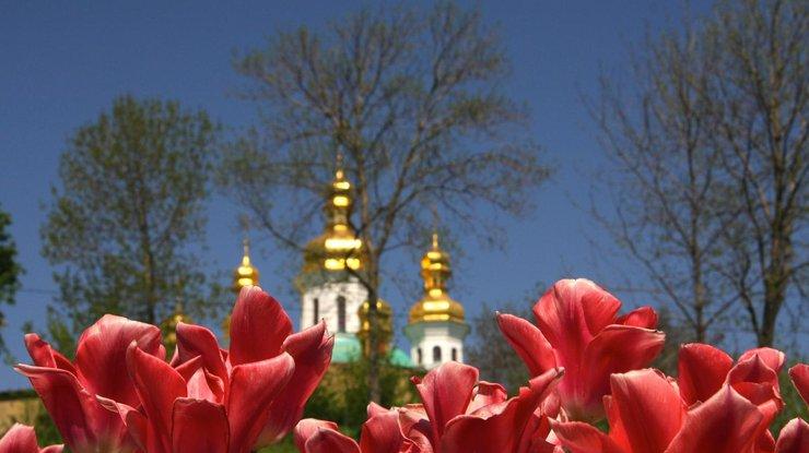 Синоптик: вУкраинском государстве продолжается потепление всопровождении осадков ипорывистого ветра (КАРТА)