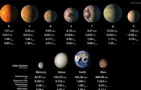 Год на планетах в обитаемой зоне длится от 4 до 9 дней. Рис. NASA