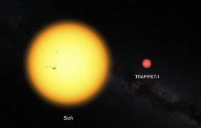 Trappist гораздо меньше нашего Солнца. Рис. NASA