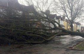 На Великобританию обрушился страшный шторм