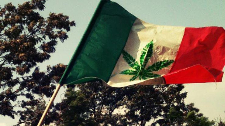 ВМехико разрешили эвтаназию илегализовали марихуану