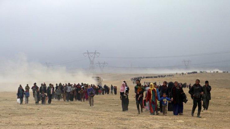 ООН: почти 13 тыс. человек бежали изЗападного Мосула задва дня