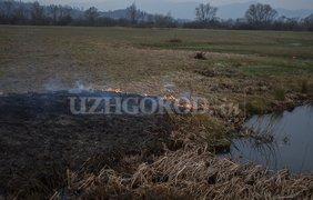 Фото: Uzhgorod.net.ua