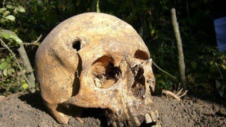 В КНР найдены останки доэтого неизвестных науке предков человека