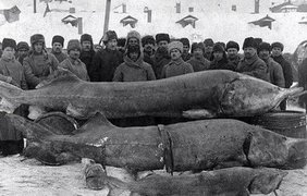 """Удачная рыбалка"". СССР, 1924 год"