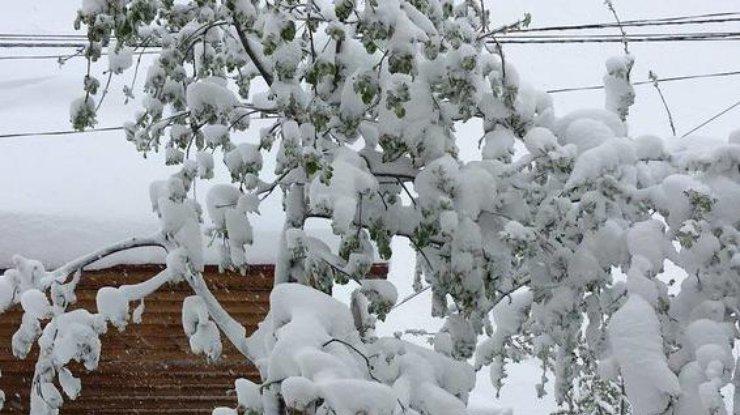 ВМолдавии объявлено чрезвычайное положение из-за снежного циклона