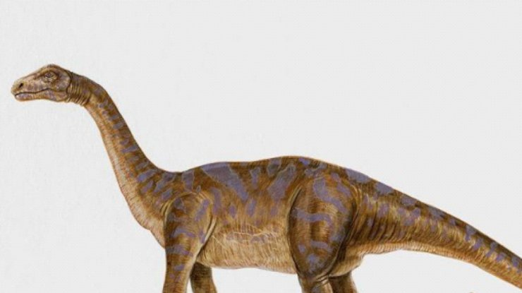 Учёные отыскали вПиренейских горах следы вымершей рептилии