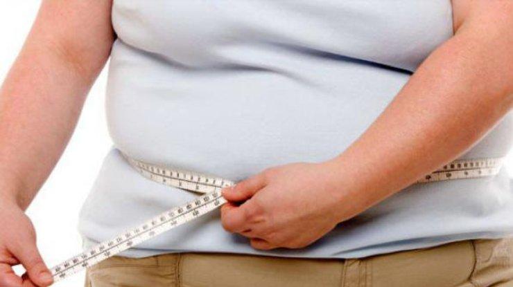 Ученые отыскали гормон, отвечающий заожирение