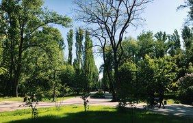 Фото: Podrobnosti.ua/ Наталия Клюева