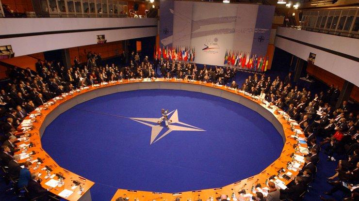 Бойцы НАТО небудут воевать вСирии