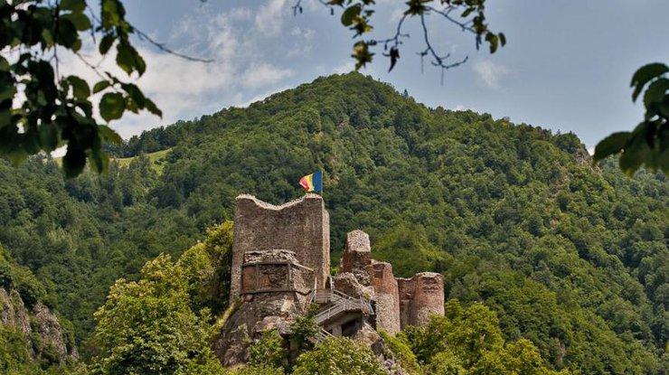 ВРумынии закрыли замок Дракулы из-за активности медведей