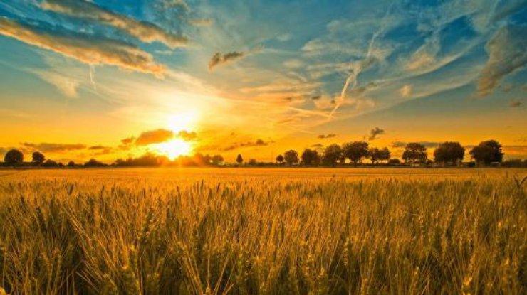 День летнего солнцестояния: приметы и традиции