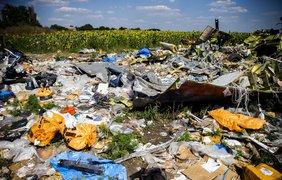 Крушение MH17: самые ужасающие фото трагедии