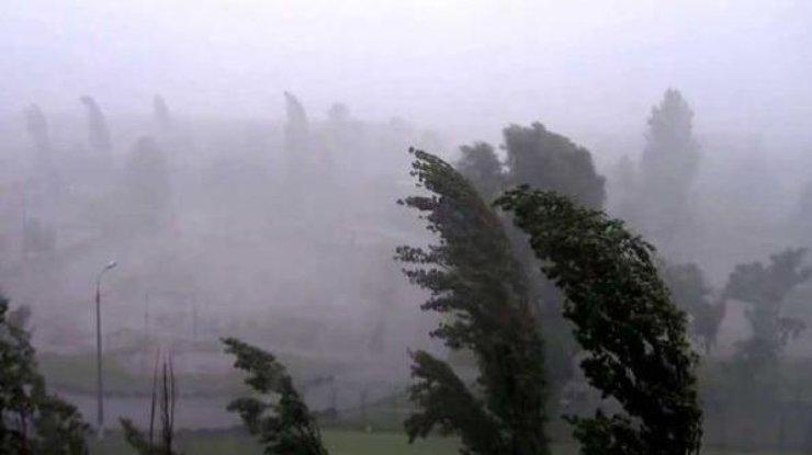 Непогода обесточила несколько районов Одесской области