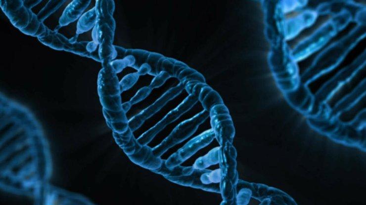 Ученые поведали, как заразить компьютер ДНК-вирусом