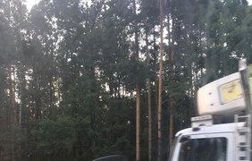 В результате погиб водитель грузовика