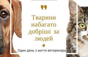 Один число з життя ветеринара: тварини набагато добріші после людей