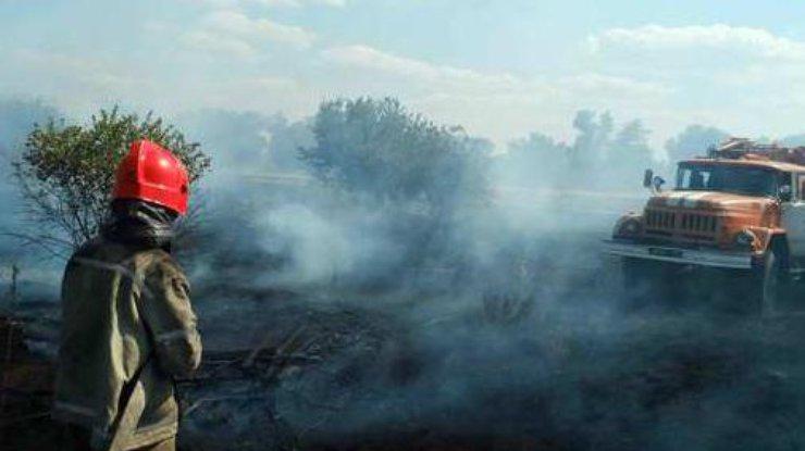 ВЖитомирской области полыхает 60 гаПолесского заповедника