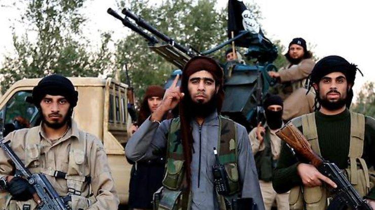 ВАфганистане талибы убили семерых полицейских
