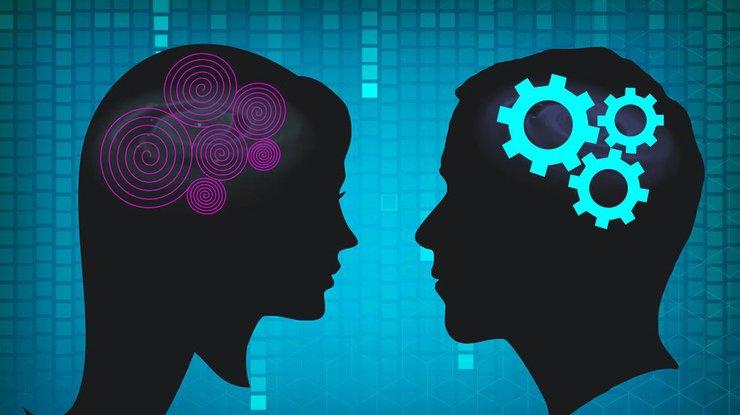 Женский мозг оказался намного активнее мужского— медперсонал