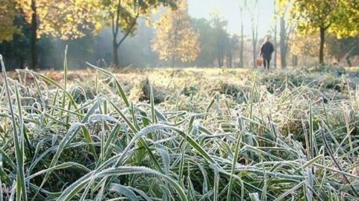 Вближайшие дни вУкраинском государстве будут заморозки— ГСЧС