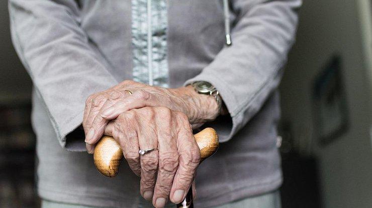 утверждают что в старости каждый гриб