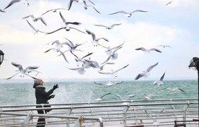 Фото: pushkinska.net