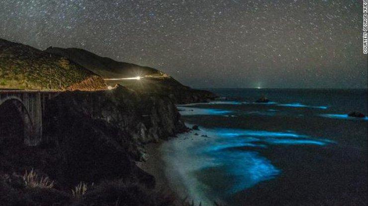 В Калифорнии засветился океан