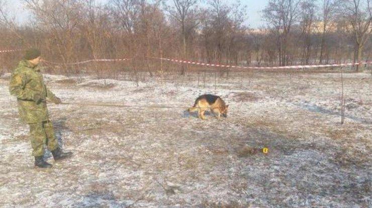 Пес откопал напустыре тело ребенка— ужасающая находка