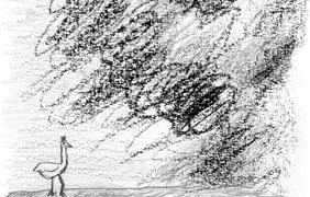 """иллюстрации Марины Абрамович для """"Гадкого утенка"""""""