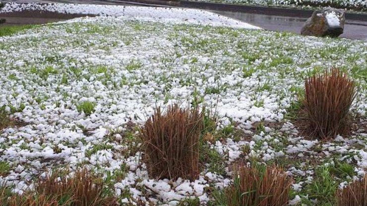Францию засыпало снегом (фото, видео)