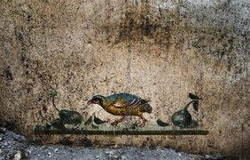В Помпеях раскопали новые фрески