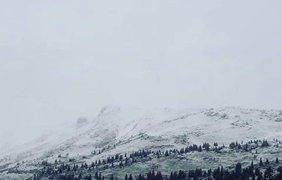 В Карпатах выпал летний снег