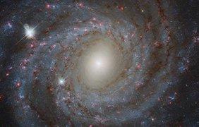 Галактика NGC 3344 в созвездии Малый Лев Фото: ESA