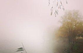 Фото: туман в Киеве / instagram.com/k.barvinenko