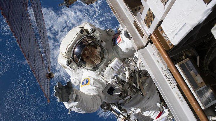 Жизнь в невесомости и восходы каждые 1,5 часа Фото: NASA