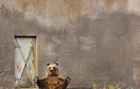 Фото: fresher.ru
