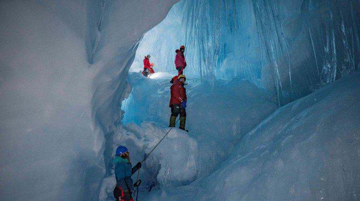 Украинці обнаружили странную находку в Антарктиде / Фото: life.pravda.com.ua