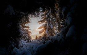 Карпаты/ Фото: Fb/Ткач Руслан