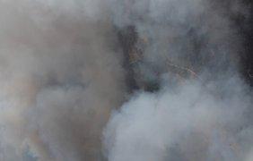 Пожар в Чернобыльской зоне/ Фото: facebook.com/aerorozvidka