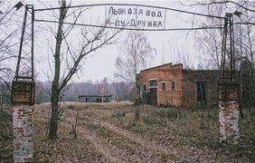 Фото: ua.zinaida.art